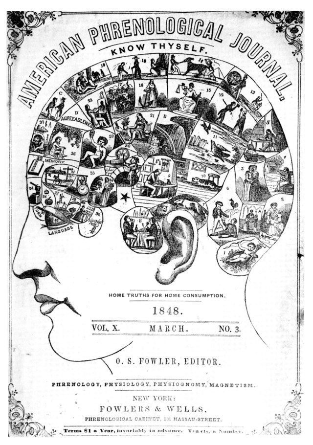 This is your head on phrenology