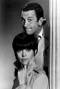 She did look rather like Barbara Feldon, but I definitely didn't look like Don Adams