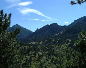 750px-Green_mountains