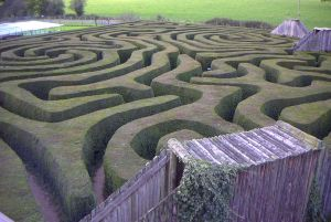 Some traps can be quite convoluted (Longleat maze, England)